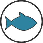 icon simple fish with colour
